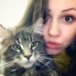 Cats52