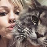 Cats71